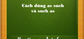 cach dung as such such as