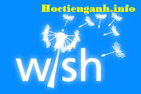 cach-dung-wish