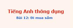 tienganhthongdung bai12